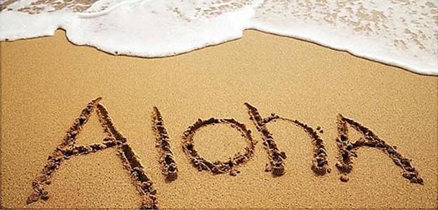 Beyond Kona Banner Hawaii Aloha