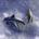 Beyond Kona Banner Hawaii Dolphin