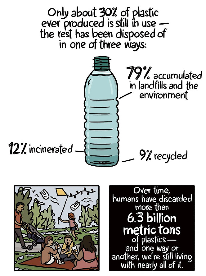 Plastic Pollution Graph