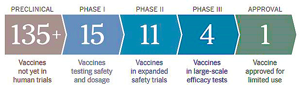 Virus Vaccines Efforts